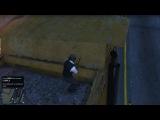 GTA V Online. Разборки на пляже